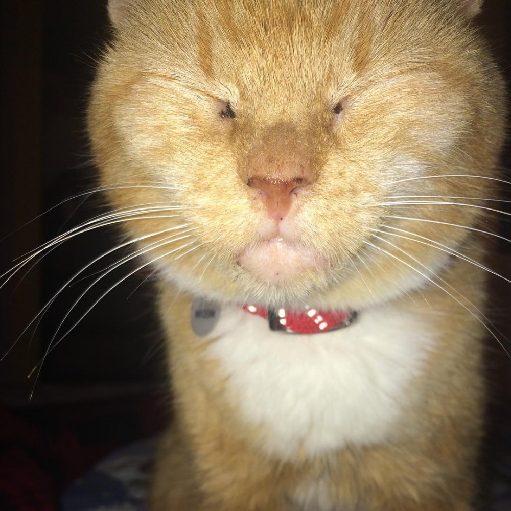 When you accidentally leave the flash on and feel likehellip