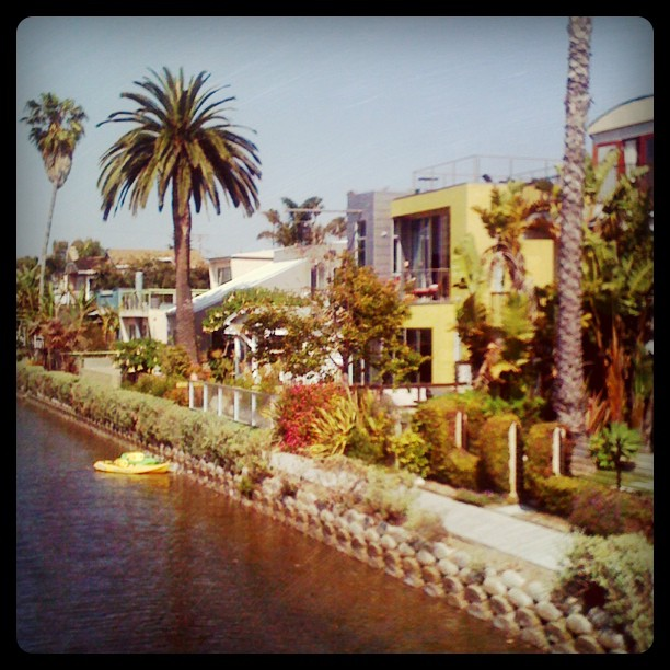 canals I Miss LA hipstercrite featured 20 something  Venice canals Venice Beach personal assistant Los Angeles I miss LA Hollywood Hills featured CultureMap Austin Coming of age in LA 