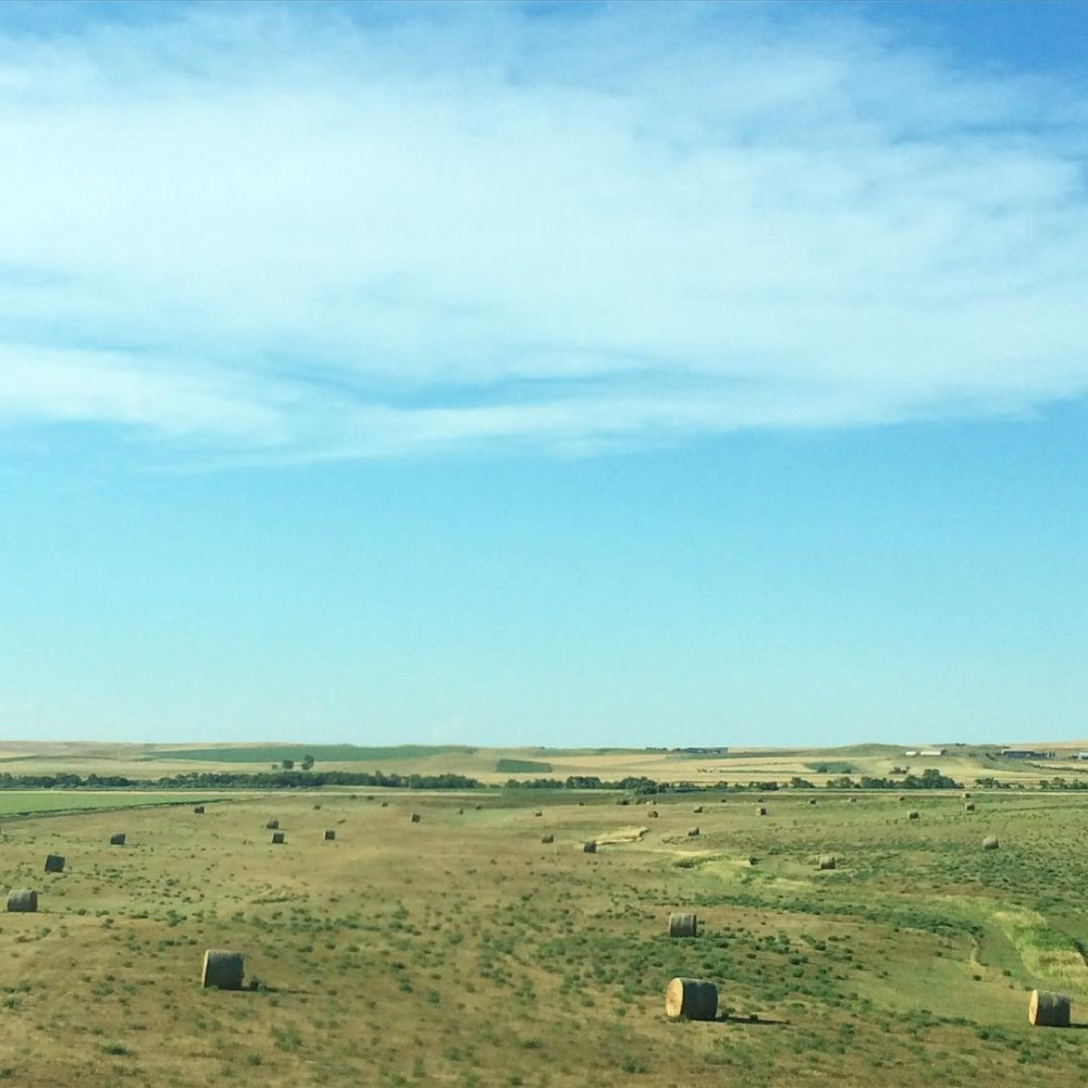 Hello SouthDakota! You sure have pretty farmlands roadtrip