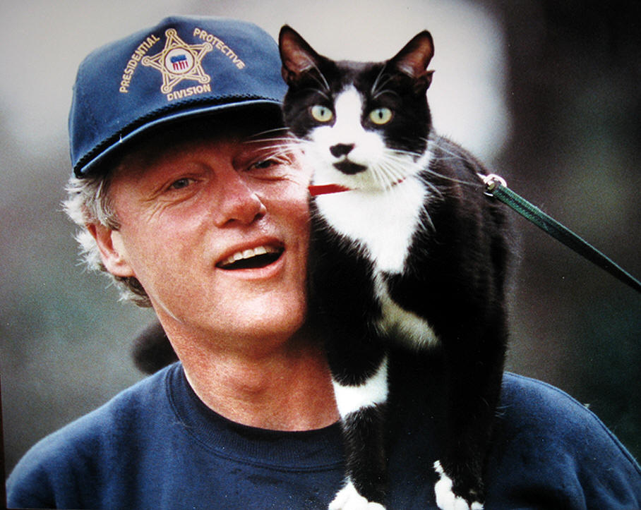 bill clinton is cool cat