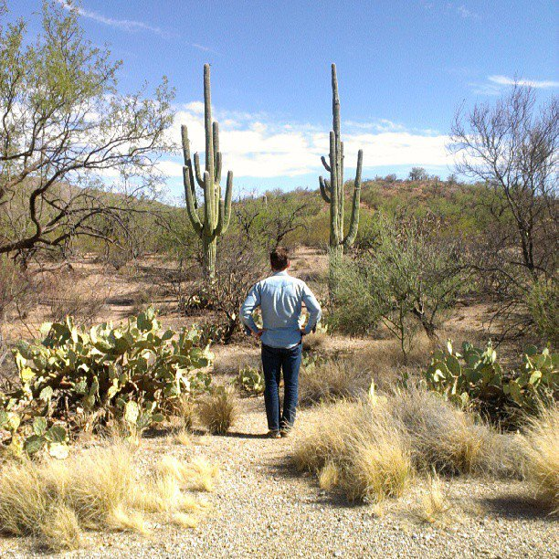 Tucson Saguaro National Park