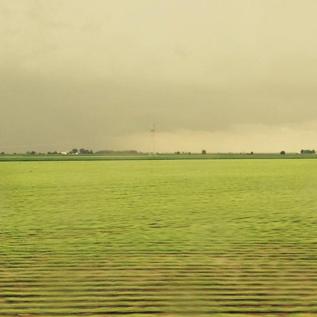 Midwest field Missouri