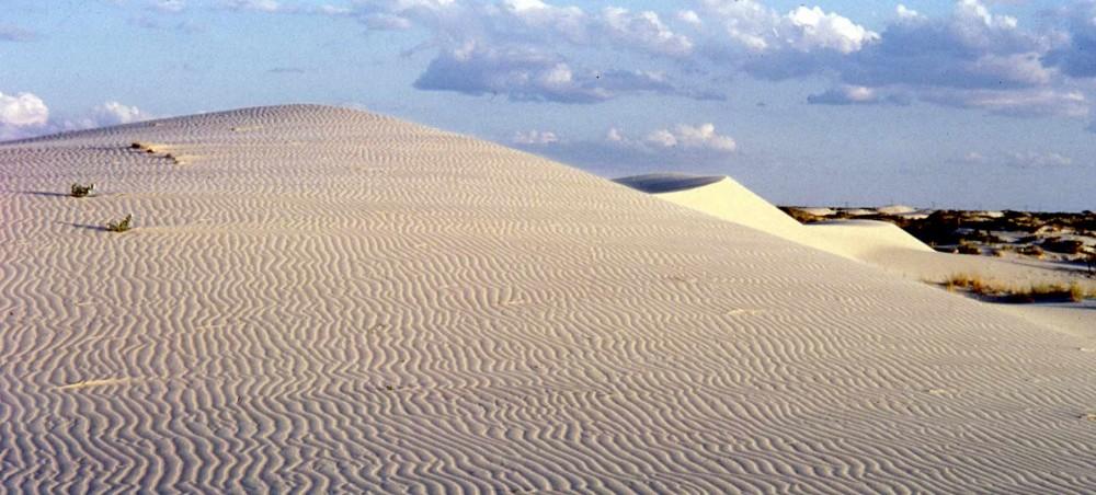 Monahans sand dunes