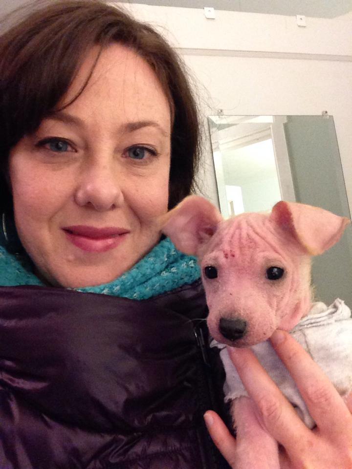 rescue dog austin